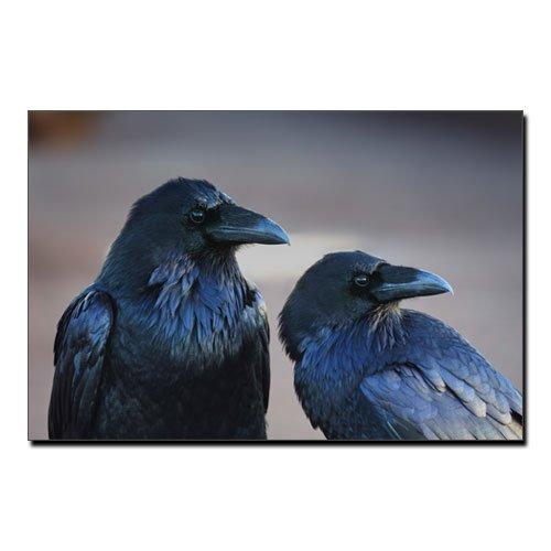 Ravens of Odin Huginn and Muninn Viking Canvas Print
