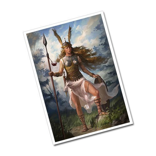 Valkyrie Viking Greeting Card Postcard